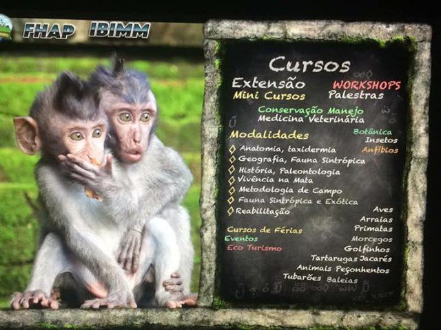 CURSOS OFERECIDOS: